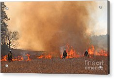 Alpine Hotshots Ignite The Norbeck Prescribed Fire. Acrylic Print