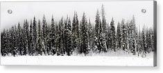 Winter Scene // Whitefish, Montana  Acrylic Print by Nicholas Parker