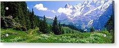 Alpine Scene Near Murren Switzerland Acrylic Print by Panoramic Images