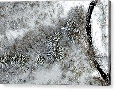 Alpine Snow Trees Acrylic Print by Stephen Richards