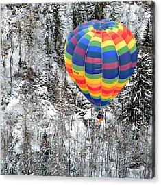 Alpine Tree Flight Acrylic Print by Stephen Richards