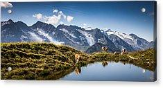 Alpine Vista Acrylic Print