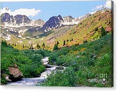 Alpine Vista With Wildflowers Acrylic Print