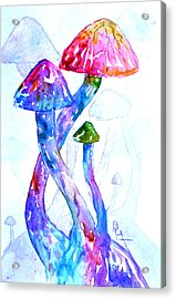 Altered Visions II Acrylic Print