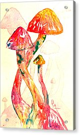 Altered Visions IIi Acrylic Print by Beverley Harper Tinsley
