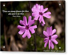 Always Flowers Acrylic Print by Marilyn Carlyle Greiner