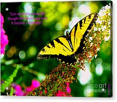 Always Hope - Butterfly Acrylic Print by Shelia Kempf