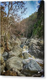 Always In My Heart Acrylic Print by Laurie Search