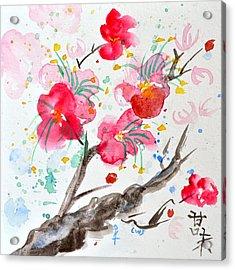 Amami Or Sweetness Acrylic Print