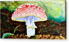 Amanita And Lacewing Acrylic Print by Beverley Harper Tinsley