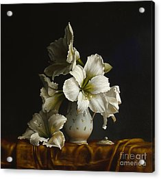 Amaryllis On Silk Acrylic Print