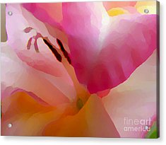 Gladiola Photo Painting Acrylic Print by Rich Collins