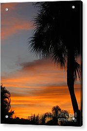 Amazing Sunrise In Florida Acrylic Print