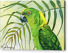 Amazon Acrylic Print by Lyse Anthony