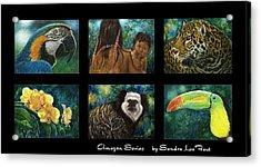 Amazon Series Collage Acrylic Print by Sandra LaFaut