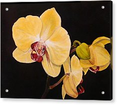 Acrylic Print featuring the painting Amber Orchids by Sandra Nardone