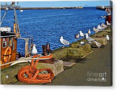 Acrylic Print featuring the photograph Amble Quayside by Les Bell