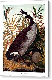 America 2008 Acrylic Print by Philip Slagter