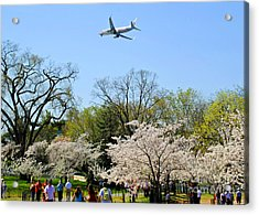 American Airlines Acrylic Print by Jost Houk