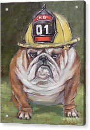 American Bulldog Fireman Acrylic Print