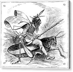 American Cartoon, 1874 Acrylic Print by Granger