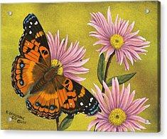American Painted Lady Acrylic Print by Rick Bainbridge