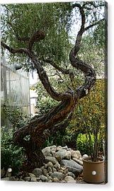 American Zen Acrylic Print