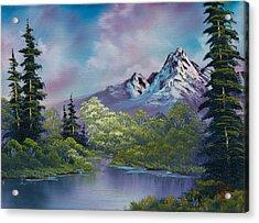 Amethyst Evening Acrylic Print by C Steele