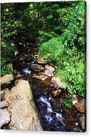 Amicalola Falls Acrylic Print by Jennifer Hotai