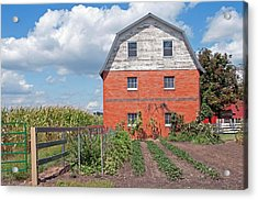 Amish Barn And Garden Acrylic Print by David Arment