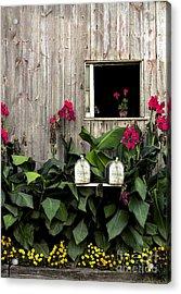 Amish Barn Acrylic Print