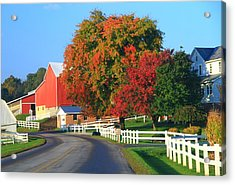Amish Barn In Autumn Acrylic Print