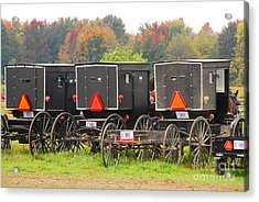 Amish Buggies 2 Acrylic Print by Mary Carol Story