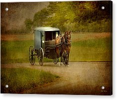 Acrylic Print featuring the photograph Amish Buggy Ride by Dyle   Warren