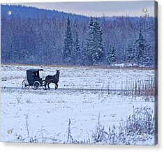 Amish Carriage Acrylic Print by Jack Zievis