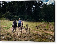 Amish Farming Acrylic Print by Tom Mc Nemar