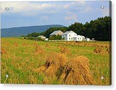 Amish Harvest #1 - Milroy Pa Acrylic Print