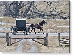 Amish Horse And Buggy March 2013 Acrylic Print