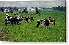 Amish Pastureland  Acrylic Print