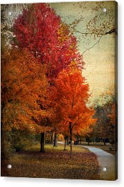 Among The Maples Acrylic Print by Jessica Jenney