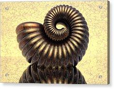 Amonit4 Acrylic Print by Jan Wolf