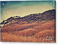Amrum Dunes Acrylic Print by Angela Doelling AD DESIGN Photo and PhotoArt