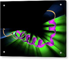 Amyloid Beta Protein Molecule Acrylic Print