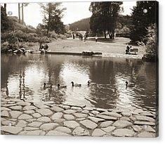Acrylic Print featuring the photograph An Afternoon At Botanical Garden by Hiroko Sakai