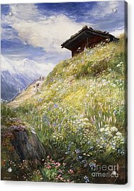An Alpine Meadow Switzerland Acrylic Print by John  MacWhirter