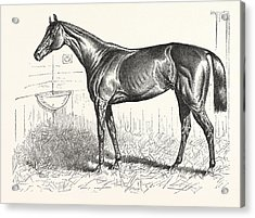 An American Racer In England, Mr. Keenes Foxhall Acrylic Print