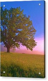 An All-american Sunrise Acrylic Print