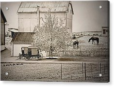 An Amish Farm In Sepia Acrylic Print