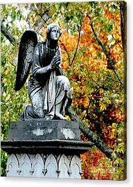 Acrylic Print featuring the photograph An Angels' Prayer by Lesa Fine