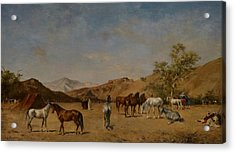 An Arabian Camp Acrylic Print by Eugene Fromentin